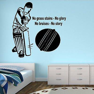 Living Room Decor Ideas For Cricket Lovers Real Estate News