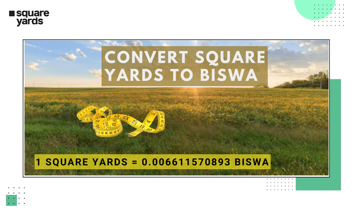Square Yards to Biswa