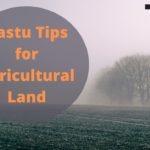 Top 10 Vastu Tips for Agricultural Land